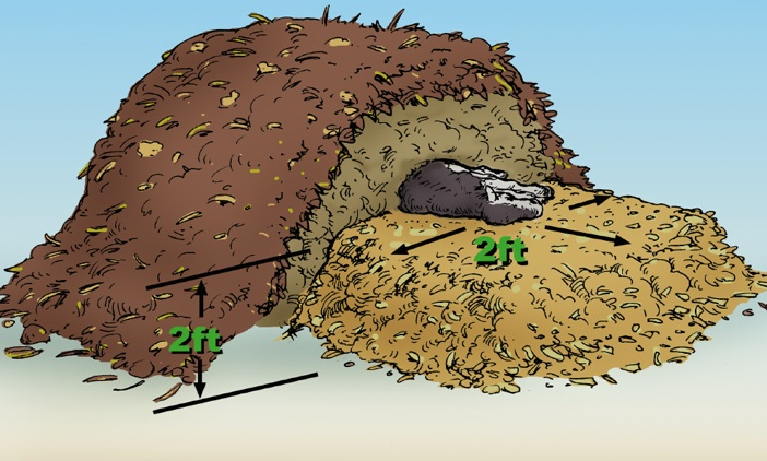 Cross Section of a Static Mortality compost pile
