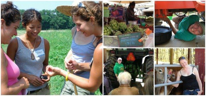 collage of images of women farmers