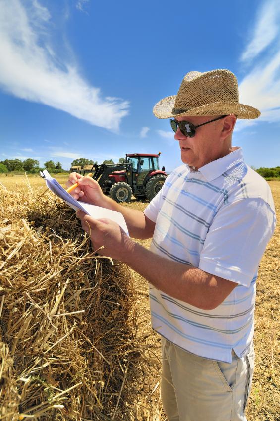 Farmer reviewing paperwork