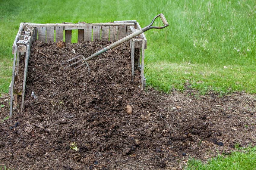 Bin of compost with pitchfork for turning the pile